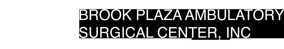 Brook Plaza White Logo Horizontal